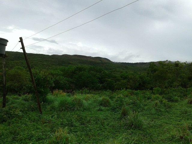 Fazenda 145 ha em Várzea da Palma/MG - Foto 3