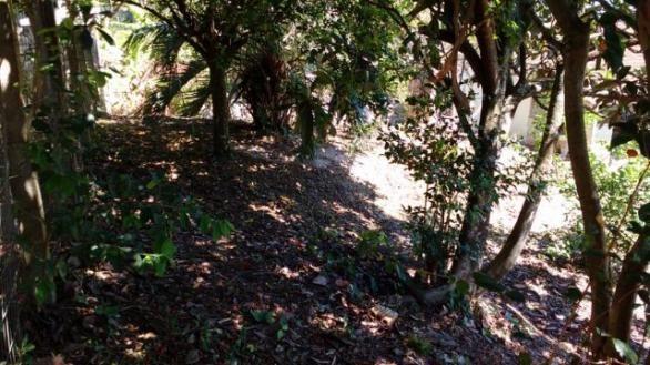 Barbada : Casa na Caiacanga, Ribeirão da Ilha, com 3 dormitórios, área de 650m² - Foto 6