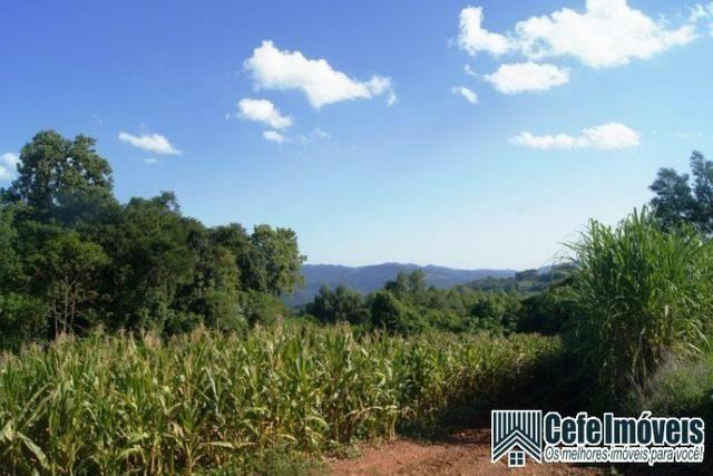 Área de terras com 11.15 hectares em Pinhal Alto - Nova Petrópolis / RS - Foto 6
