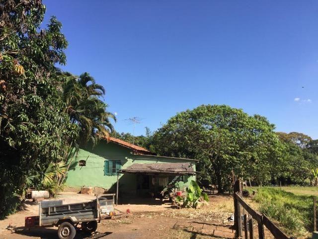 Chácara Setor Eli Forte - Goiânia-Oportunidade - Foto 10