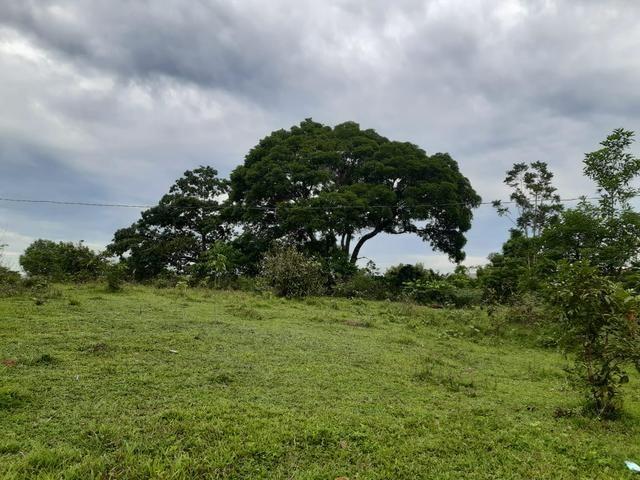 Terreno bem localizado - Foto 2