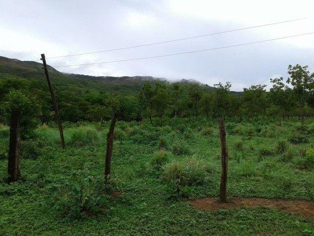Fazenda 145 ha em Várzea da Palma/MG - Foto 4
