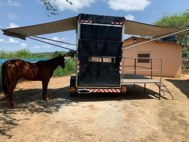 Reboque para cavalo - Foto 3