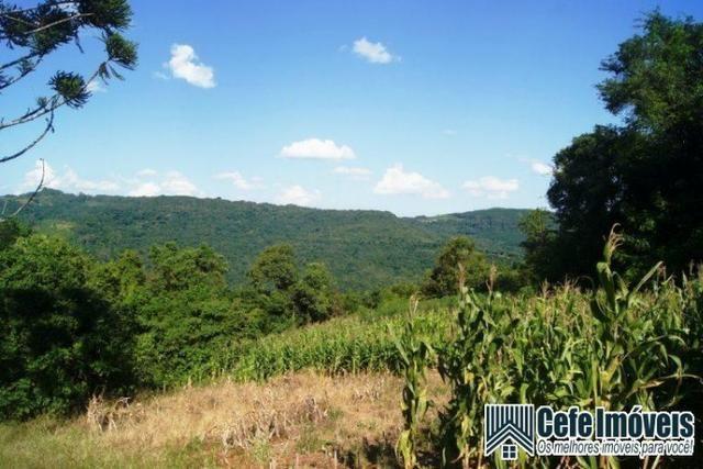Área de terras com 11.15 hectares em Pinhal Alto - Nova Petrópolis / RS - Foto 5
