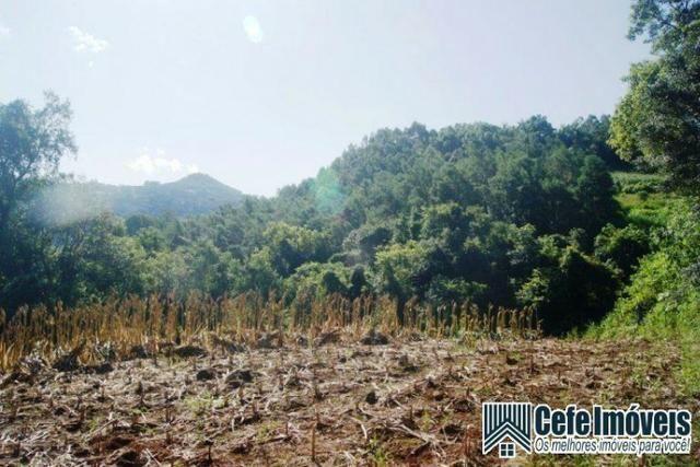 Área de terras com 11.15 hectares em Pinhal Alto - Nova Petrópolis / RS - Foto 9