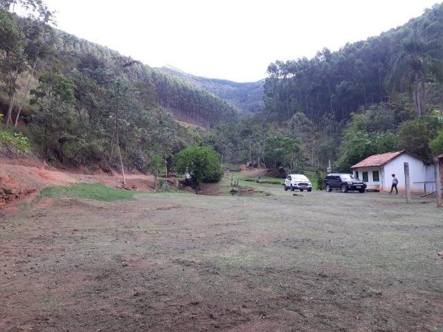 Fazenda em Pindamonhangaba - Foto 4