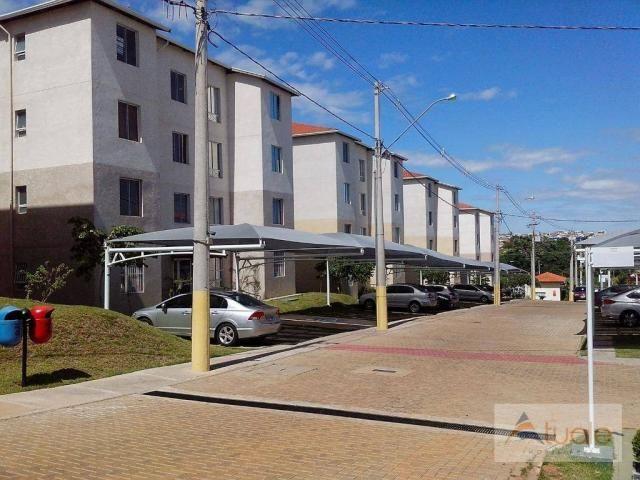 Apartamento com 3 dormitórios à venda, 50 m² - condomínio pitangueiras - hortolândia/sp - Foto 8