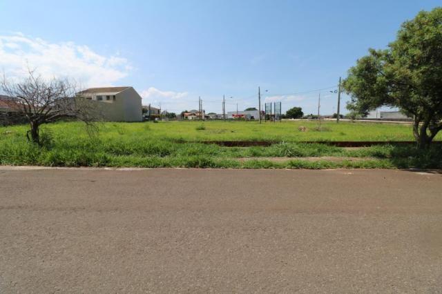 Terreno para alugar em Jardim colina verde, Maringa cod:L51431 - Foto 13
