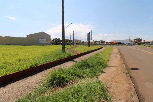 Terreno para alugar em Jardim colina verde, Maringa cod:L51431 - Foto 10