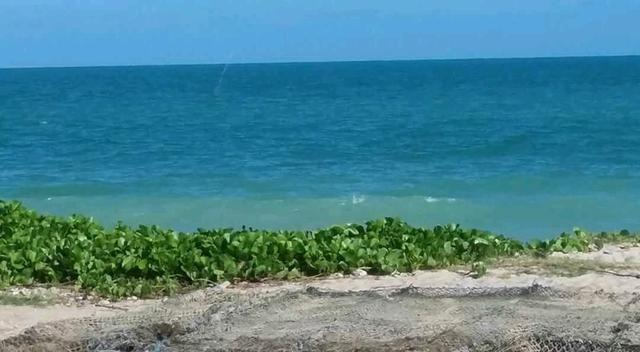 Oportunidade de ouro terreno na praia de ponta de pedras!! - Foto 11