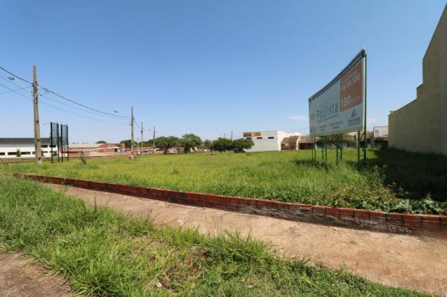 Terreno para alugar em Jardim colina verde, Maringa cod:L51431 - Foto 3