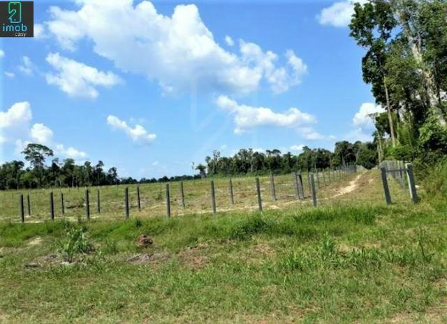 Vendo Fazenda em Novo Airão - Foto 6