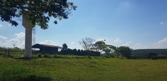 Fazenda 220 Alqueires - Foto 10