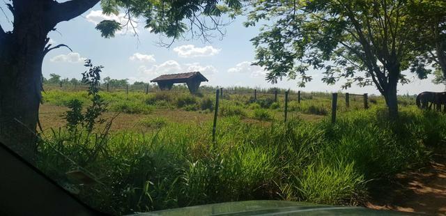 Fazenda 220 Alqueires - Foto 12
