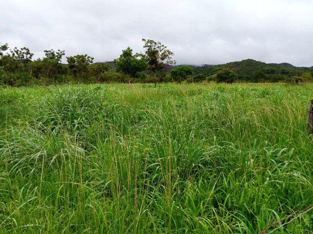 Fazenda 145 ha em Várzea da Palma/MG - Foto 11