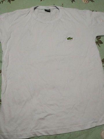Camiseta masculina Lacoste Tam M  - Foto 2