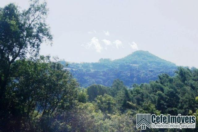 Área de terras com 11.15 hectares em Pinhal Alto - Nova Petrópolis / RS - Foto 4