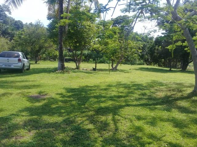 Fazenda top toda formada de 240 hectares a 100km de Várzea Grande - Foto 11