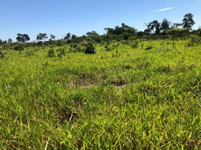 12 alqueires gleba ariranha, aceito permuta imóveis em Tangará - Foto 4