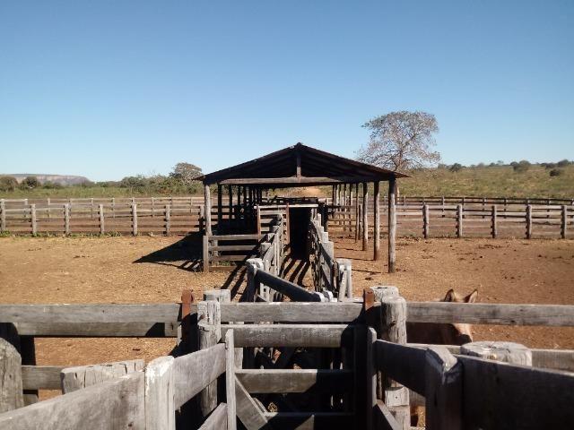 Fazenda de 1940 hectares, ha 60 km de Cuiabá, na região do manso