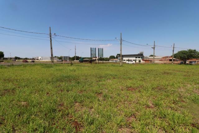 Terreno para alugar em Jardim colina verde, Maringa cod:L51431 - Foto 5
