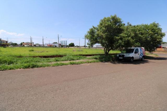 Terreno para alugar em Jardim colina verde, Maringa cod:L51431 - Foto 14