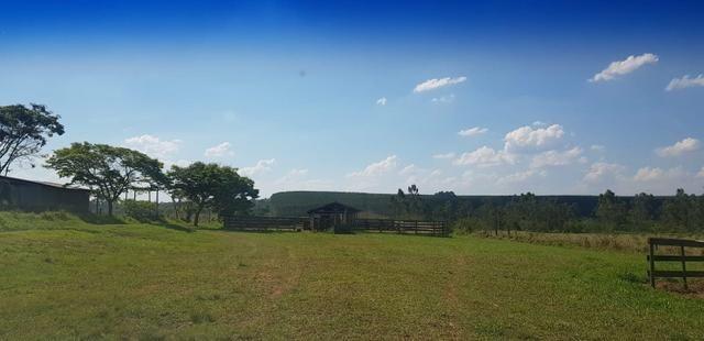 Fazenda 220 Alqueires - Foto 9