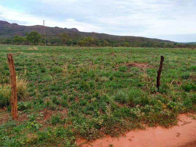 Fazenda 145 ha em Várzea da Palma/MG - Foto 8