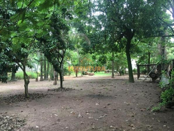 Chácara com 2 dormitórios à venda, 2000 m² por R$ 650.000,00 - Granja Regina - Rio Claro/S - Foto 4