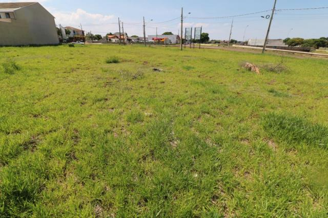 Terreno para alugar em Jardim colina verde, Maringa cod:L51431 - Foto 15