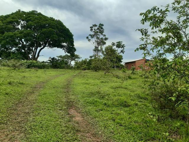 Terreno bem localizado - Foto 4