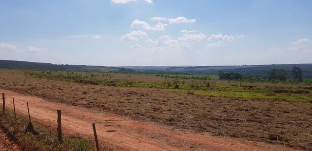 Fazenda 220 Alqueires - Foto 4