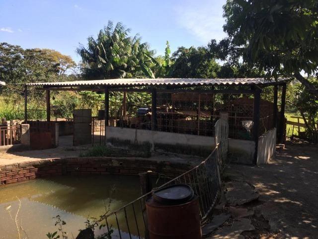 Chácara Setor Eli Forte - Goiânia-Oportunidade - Foto 15