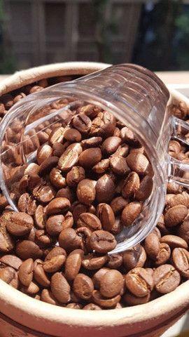 Micro lote 2020. Café  cultivado sem agroquímicos. - Foto 3
