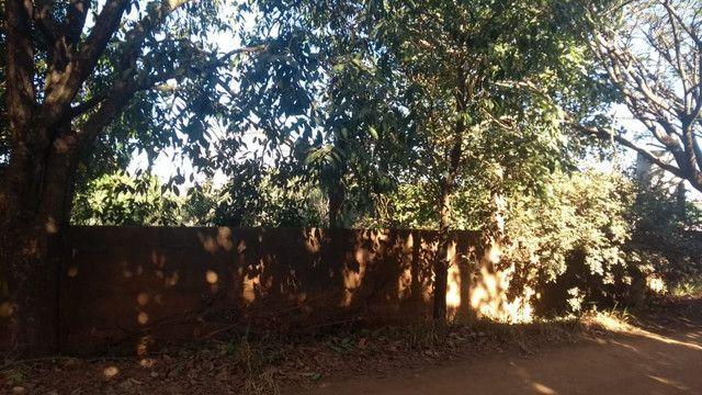 Chácara em Santo Antônio de posse  - Foto 6