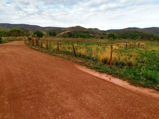 Fazenda 145 ha em Várzea da Palma/MG - Foto 7