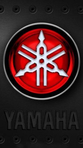 VENDE-SE MOTO YS 250 FAZER / FAZER L.EDITION/GASOLINA 2011 - Foto 5