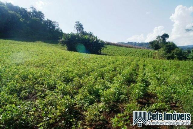 Área de terras com 11.15 hectares em Pinhal Alto - Nova Petrópolis / RS - Foto 2