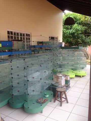 Estantes de vidro