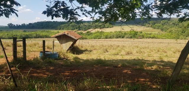 Fazenda 220 Alqueires - Foto 11