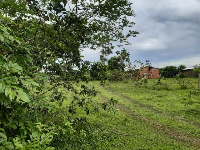 Terreno bem localizado - Foto 3
