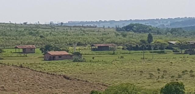 Fazenda 220 Alqueires - Foto 2
