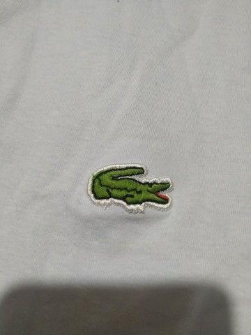 Camiseta masculina Lacoste Tam M  - Foto 3