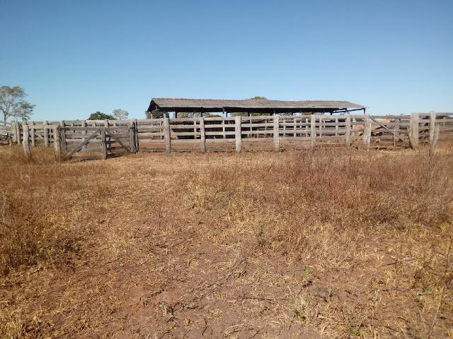 Fazenda de 1940 hectares, ha 60 km de Cuiabá, na região do manso - Foto 12