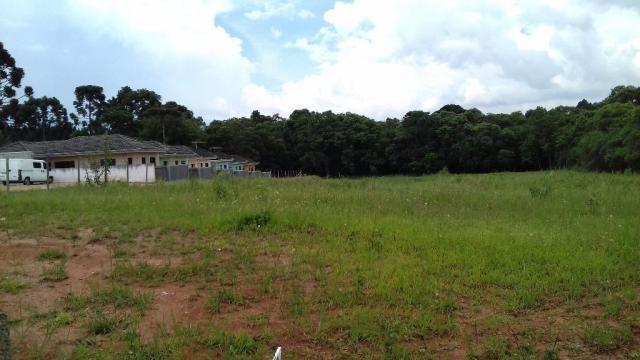 Terreno residencial para locação, umbará, curitiba. - Foto 7