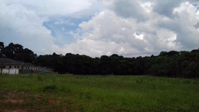 Terreno residencial para locação, umbará, curitiba. - Foto 2