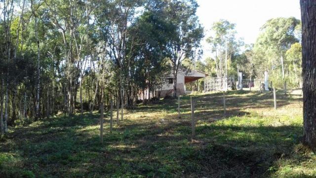 Chácara à venda, 6904 m², com 1 construção, loteamento areia branca dos nogueiras- mandiri - Foto 8