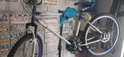Bicicleta reliquia rabo de peixe fristaly