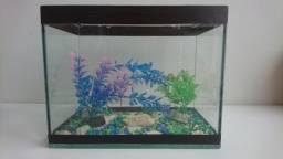Título do anúncio: Aquário 6l peixe Betta com acessórios