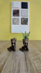 Vasos para suculentas e Cactus